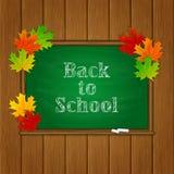 Iscrizione di nuovo alla scuola e foglie di acero sulla lavagna verde Immagini Stock