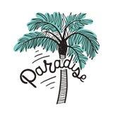 Iscrizione di paradiso scritta con la fonte calligrafica corsiva e la palma esotica isolate su fondo bianco Bella mano Fotografia Stock Libera da Diritti