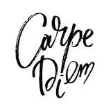 Iscrizione disegnata a mano di vettore Parole carpe diem a mano Illustrazione di vettore Calligrafia moderna scritta a mano Immagine Stock