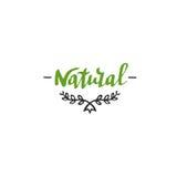 Iscrizione naturale disegnata a mano Modello organico di progettazione di vettore Fotografie Stock Libere da Diritti