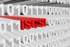 ISCSI Royalty Free Stock Photo