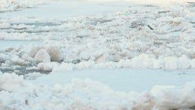Isdriva på floden Flyttande stora isisflak tätt upp arkivfilmer