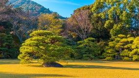 Ise Jingu Naiku (santuario di Ise Grand - santuario interno) in Ise City, Mie Prefecture Fotografia Stock