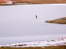 Isfiskare Alone på den djupfrysta sjön i Colorado Royaltyfri Fotografi