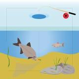 Isfiske Fotografering för Bildbyråer