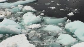 Isflöten på havet ytbehandlar i Antarktis stock video
