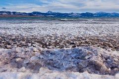 Isflak för Lage Laberge frysning-uppis Yukon Kanada royaltyfria foton