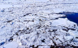 Isflak på vattnet arkivbilder