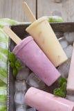 Isglassar för fruktyoghurt fotografering för bildbyråer
