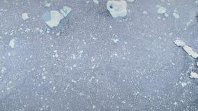 Ishav med isberget Antarktis som är bästa ner sikt lager videofilmer
