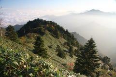 ishizuchi góra zdjęcie royalty free