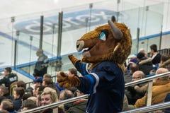 Ishockeyfan som bär den djura dräkten royaltyfria foton