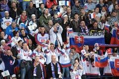 Ishockeyfans Royaltyfria Foton