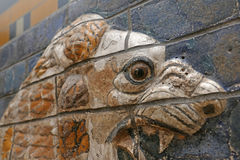Ishtar Gate Lion Eye Royalty Free Stock Images