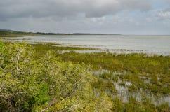 ISimangaliso-Sumpfgebiet-Park Gartenweg, Südafrika Stockbild