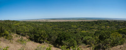 ISimangaliso Wetland Park. Central forests of iSimangaliso Wetland Park, South Africa, savannah and coastline in the background. Panorama of 6 photos Royalty Free Stock Photo