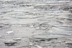 Isisflak på en flod Arkivbild