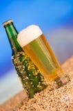 Iskall grön flaska utan etikett av öl i Royaltyfri Fotografi