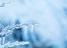 Iskall plats för blåttvinterbakgrund Royaltyfri Fotografi