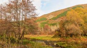 Iskar-Fluss im Fall nahe HPP Pancharevo bulgarien lizenzfreie stockbilder