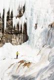 Isklättring i Banff Kanada arkivbild