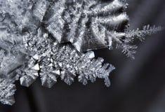 Iskristall royaltyfri bild