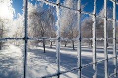 Iskristaller på ett staket Arkivbilder