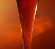 iskrzasty wino Fotografia Stock