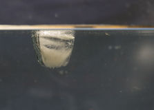 Iskub i vatten arkivbilder