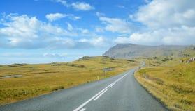 Islândia - em setembro de 2014 - viagem por estrada na estrada de anel montanha amarela verde de Islândia, fiorde da grama Imagens de Stock Royalty Free