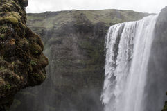 Islândia Waterall Svartifoss Imagens de Stock