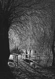 Isläggning på träd och bro på natten Arkivfoto