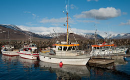 Isländische Fischerboote Stockfoto