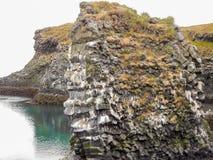 Isländische Küste Stockfotografie