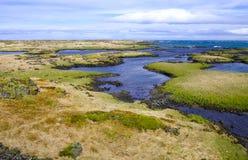 Isländische Küstenlinie im Mai Stockfotografie