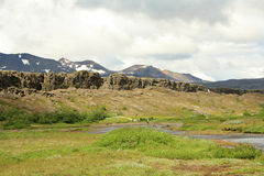 Isländische Natur Stockbilder