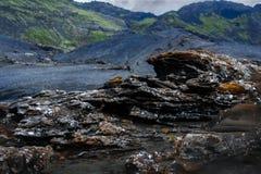 Isländische Natur Lizenzfreie Stockbilder