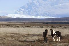 Isländischer Vulkan Erupti Ponymt.-Eyjafjallajokull Lizenzfreies Stockbild