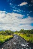 Isländsk flod Arkivfoton