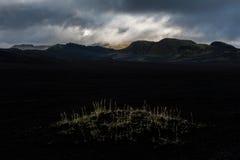 Isländsk gryning Fotografering för Bildbyråer