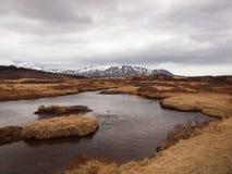 Isländsk landescape med berg i bakgrunden och en flod framme arkivbild