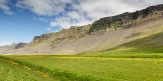 Isländsk landschap i sommartid Arkivbilder