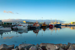 Isländsk seascapehornafjordur Fotografering för Bildbyråer