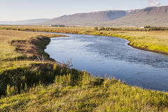 Isländskan landskap i den Varmahlio byn. Arkivbilder