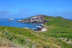Isla伊莎贝尔在离Mexico's里维埃拉纳亚里特州海岸的附近 库存图片