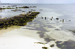 isla ακτών mujeres Στοκ εικόνες με δικαίωμα ελεύθερης χρήσης
