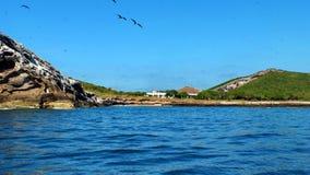 Isla Изабелла с побережья Mexico's Ривьеры Наярита стоковые изображения rf