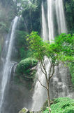 Isla Bali de la cascada a la altura Fotografía de archivo