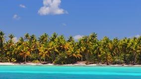 Isla caribe?a tropical Saona, Rep?blica Dominicana Playa hermosa, palmeras y agua de mar clara almacen de video