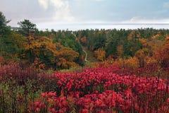 Isla colorida de Mackinac en caída Fotografía de archivo libre de regalías